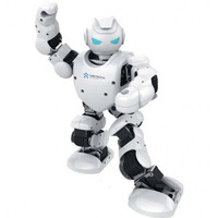 Robot Alpha 1